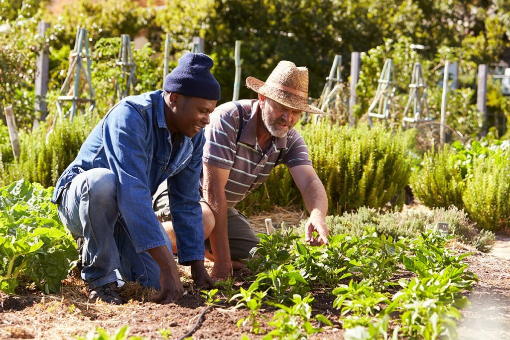 8 Reasons to Adopt a Plant-Based Diet, men working in a community garden